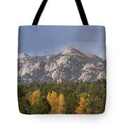 Estes Park Autumn Lake View Vertical Tote Bag