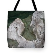 Etched Rock Water 5 Tote Bag