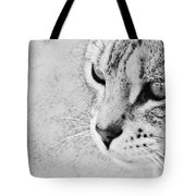 Eternal Stare Down Tote Bag
