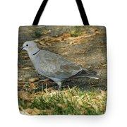 Eurasian Dove Tote Bag