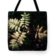 European Rowan Tote Bag