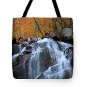 Evans Notch Waterfall Tote Bag