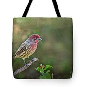 Evening Finch Blank Greeting Card Tote Bag