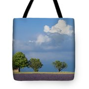 Evening In Provence Tote Bag