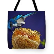 Evening Snack Tote Bag