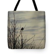 Evening Song Tote Bag by Pamela Patch