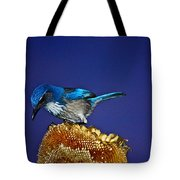 Evening Visitor Tote Bag