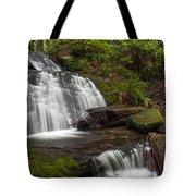 Evergreen Steps Tote Bag