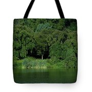 Everywhere And Nowhere - Holmdel Park Tote Bag