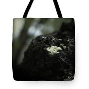Evolution Of Thought Tote Bag