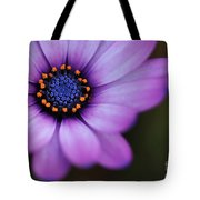 Eye Of The Daisy Tote Bag