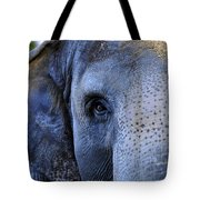 Eye Of The Elephant Tote Bag