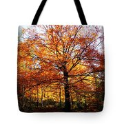 Eye Of The Forest Tote Bag