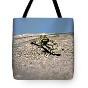 Eye To Eye With A Dragonfly Tote Bag