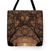 Eyes Of Secrecy Tote Bag