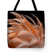 Fabulous Flamingo Feathers Tote Bag