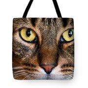 Face Framed Feline Tote Bag by Art Dingo