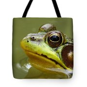 Face Of A Prince Tote Bag