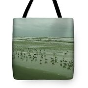 Facing The Wind Tote Bag