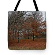 Fading Palate Tote Bag