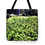 Fairie Watches Over  Tote Bag