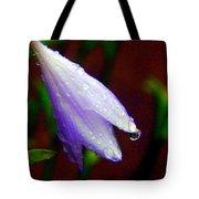 Fairy Hat Tote Bag