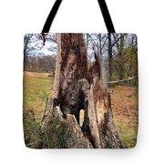 Fairy Trunklet Tote Bag