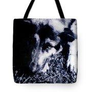 Faithful Friend Tote Bag