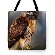 Falco 2 Tinnunculus Vf Tote Bag