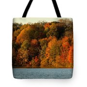 Fall Abounds Tote Bag
