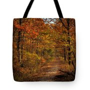 Fall At Center Point Trailhead Tote Bag