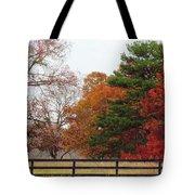 Fall Beauty Tote Bag