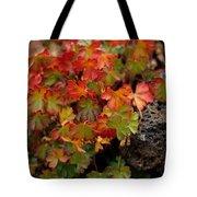 Fall Brilliance Tote Bag