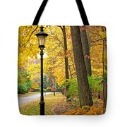 Fall Color And Lamppost Tote Bag