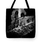 Fall Color In Black And White Tote Bag