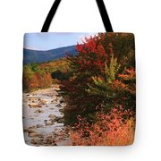 Fall Color In The White Mountains Tote Bag