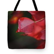 Fall Color Red Tote Bag