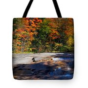 Fall Falls Tote Bag