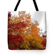 Fall Filled Sky Tote Bag