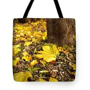 Fall Floor Tote Bag