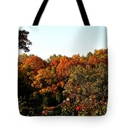 Fall Foliage And Roses Tote Bag
