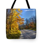 Fall Forest Road Tote Bag by Elena Elisseeva
