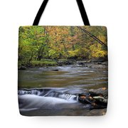 Fall Forward Tote Bag