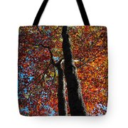 Fall From Above Tote Bag