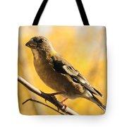 Fall Grosbeak Tote Bag