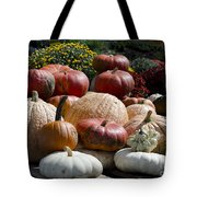 Fall Harvest Colorful Gourds 7965 Tote Bag