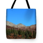 Fall In Denali Tote Bag