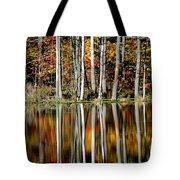 Fall In New York Tote Bag