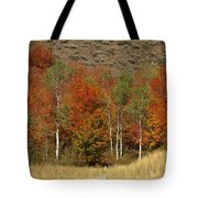 Fall In Snake River Canyon Tote Bag