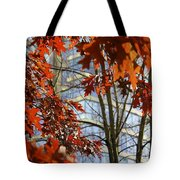 Fall In The City 1 Tote Bag